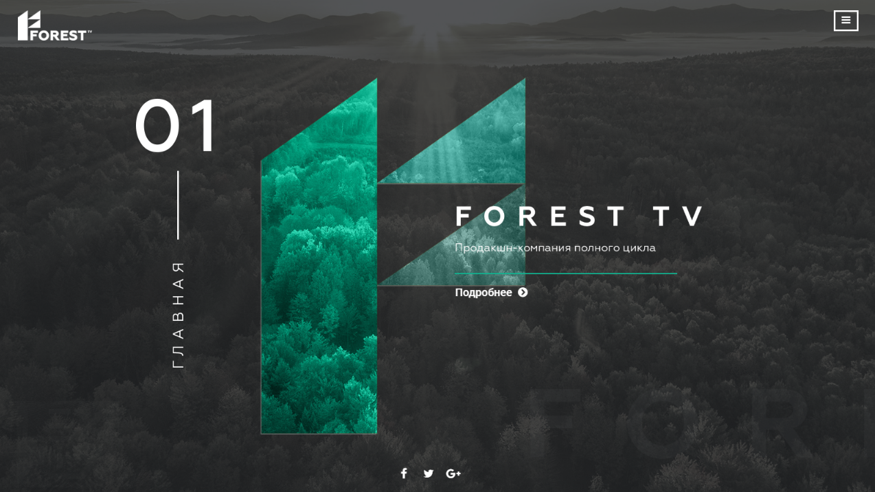 forest-tv.pro